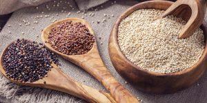 semilla de lino o linaza