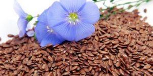 usos terapéuticos de las semillas de lino